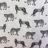 Tissu Jersey coton :  57972