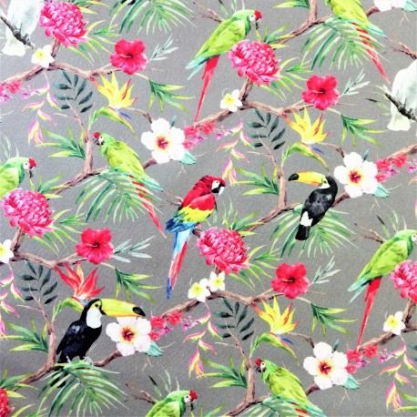 Tissu coton tropical birds : 58006